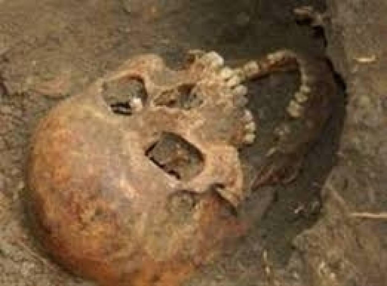 Παλιά ... ιστορία το κρανίο που βρέθηκε στην Κρήτη