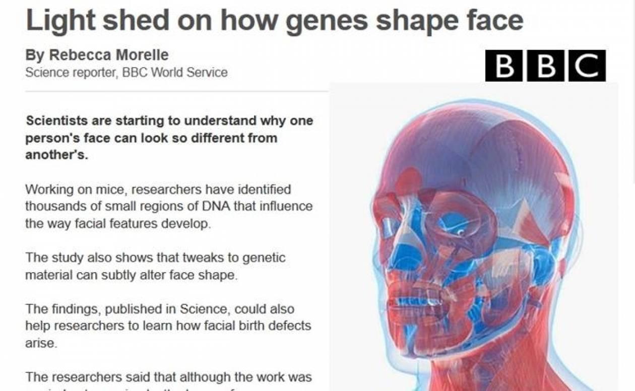 Ανακάλυψαν τα γονίδια που διαμορφώνουν το πρόσωπο