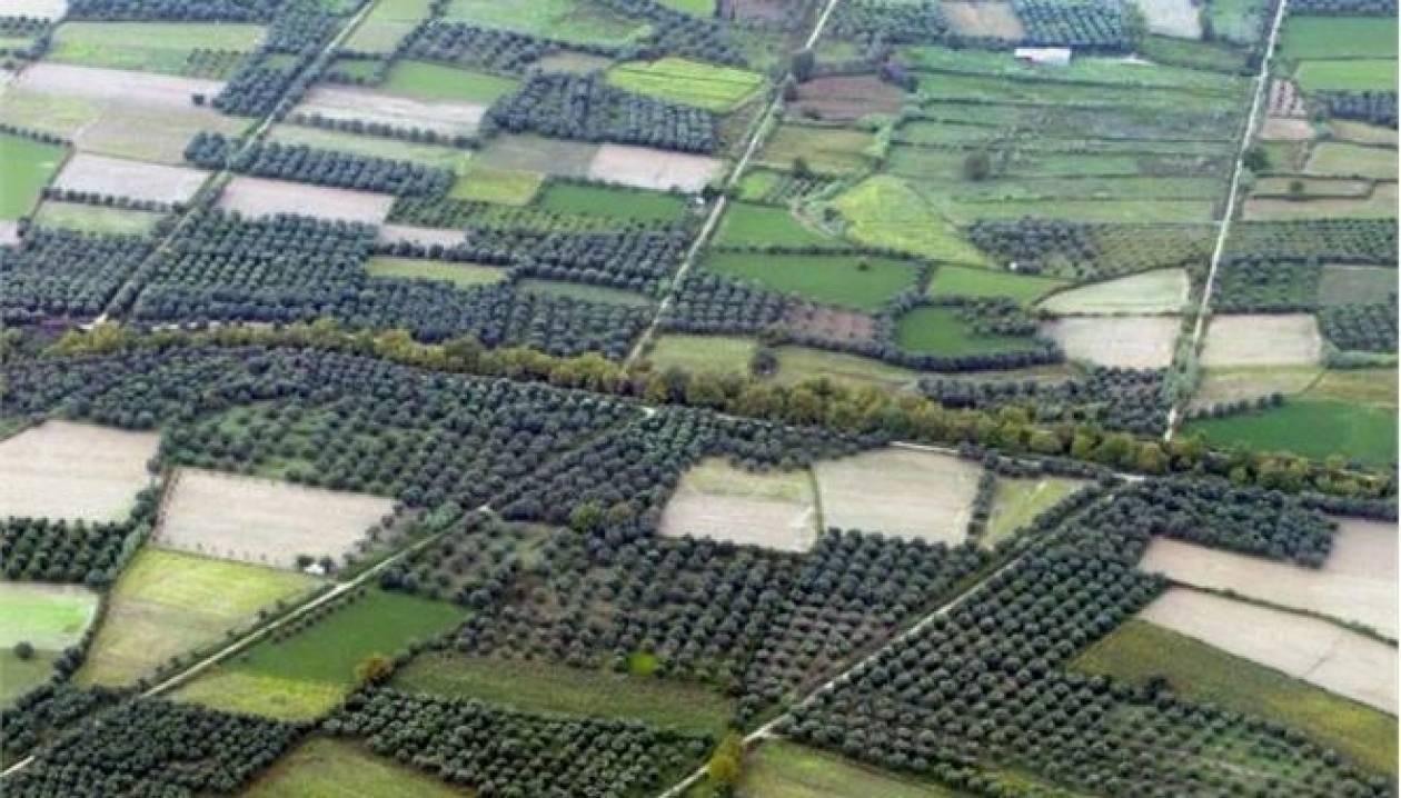 Αγρότες Πελοποννήσου: Απαράδεκτος ο φόρος στα χωράφια