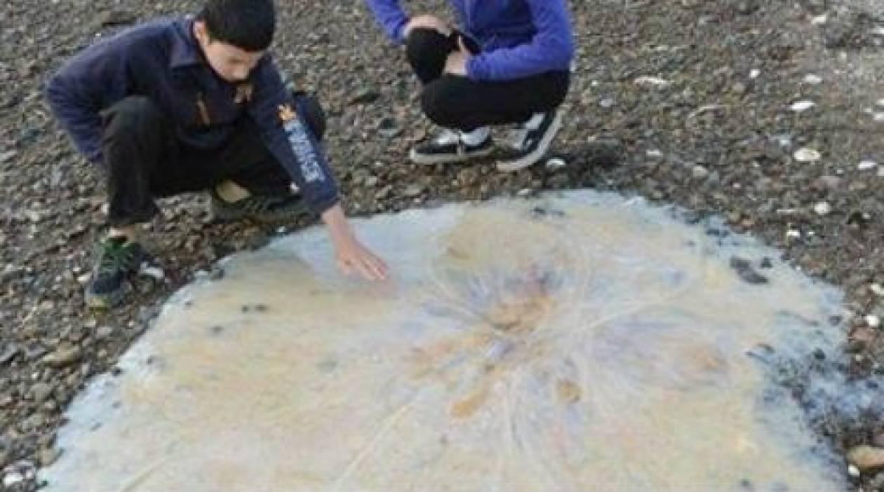 Έπαθαν την πλάκα της ζωής τους όταν βρήκαν στην παραλία...