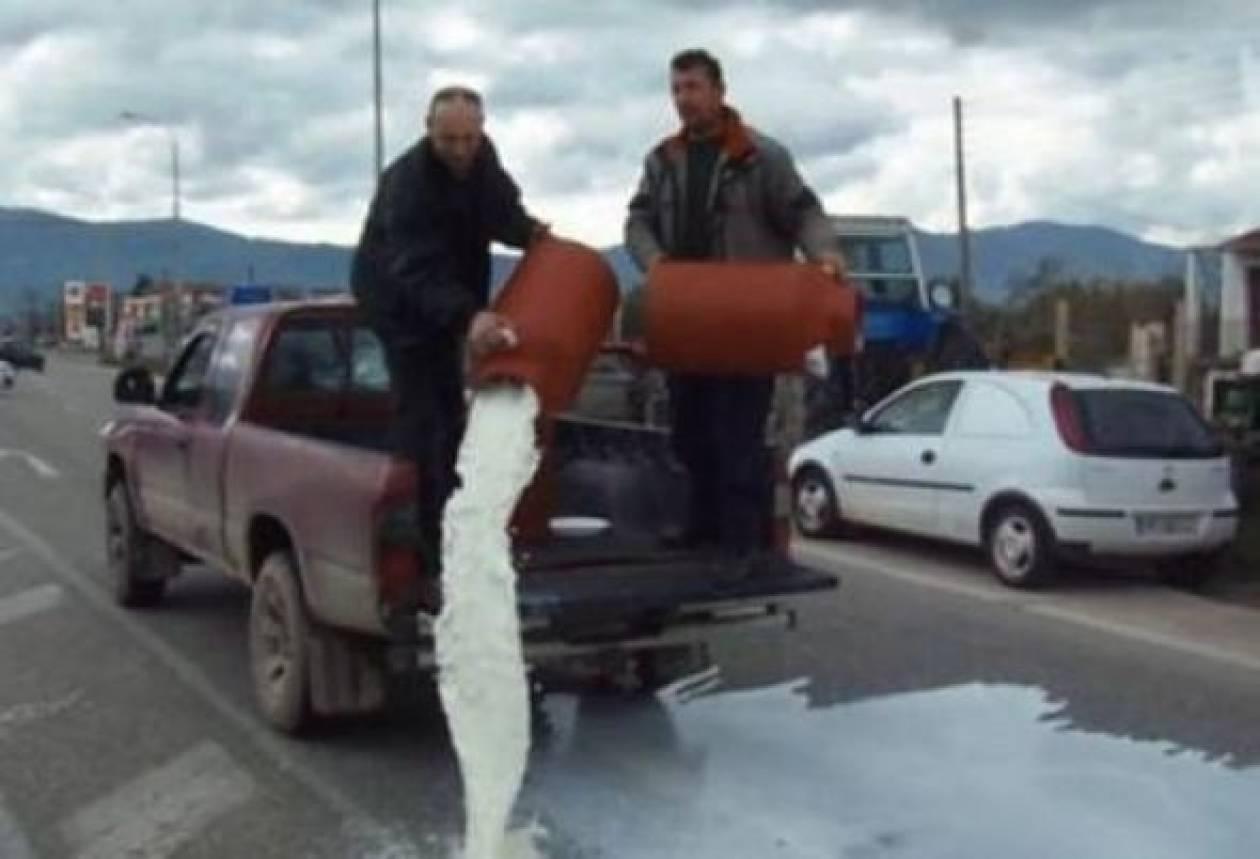 Αγανάκτησαν οι κτηνοτρόφοι: Έχυσαν τον κόπο τους στον δρόμο!