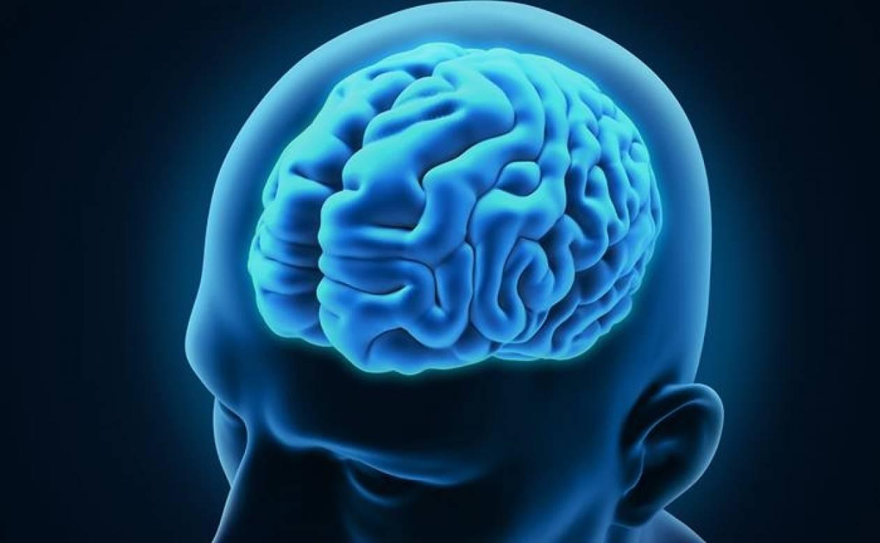Μία γονιδιακή μετάλλαξη επηρεάζει την ευφυΐα μας!