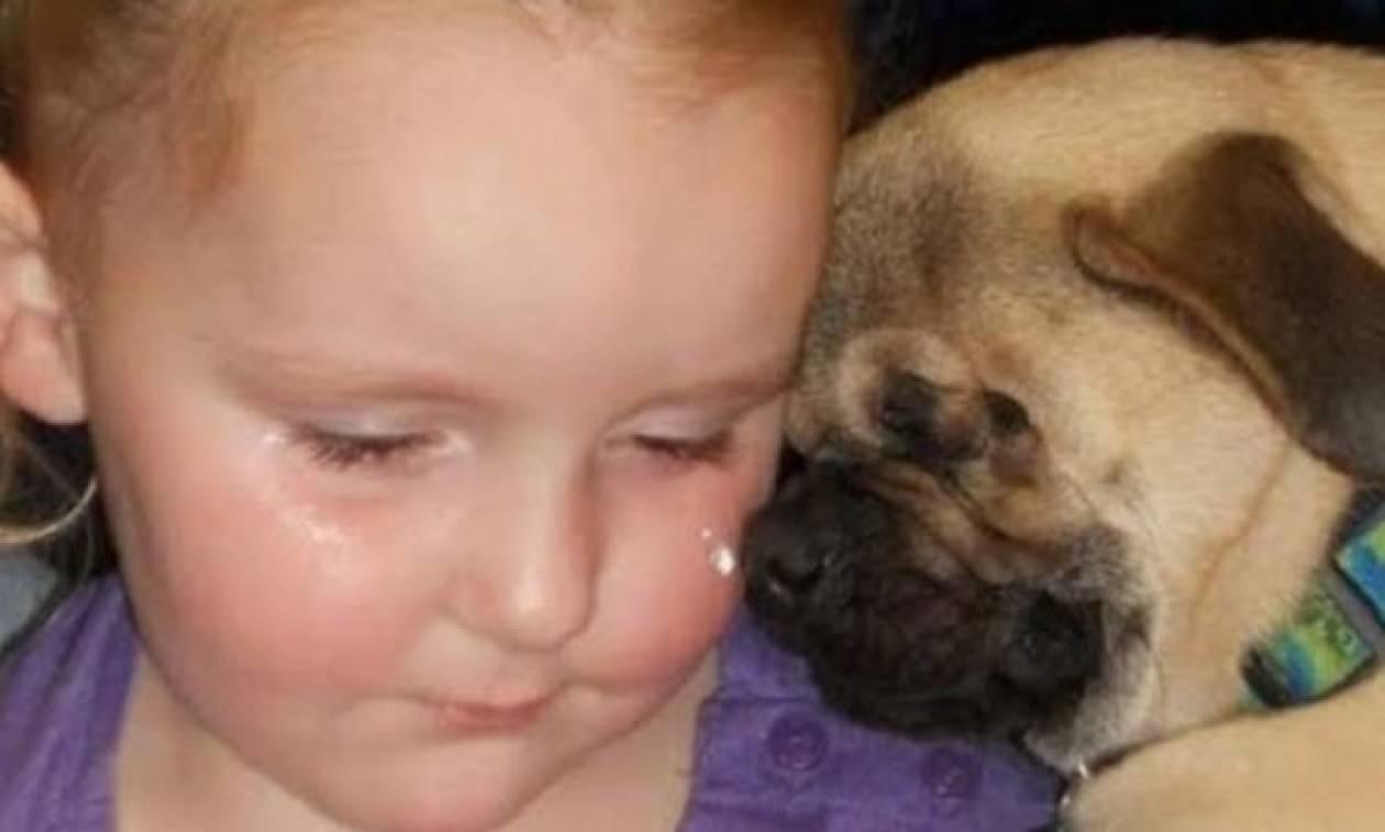 Ξάντερ, το σκυλί που έχει αφιερώσει τη ζωή του στα κακοποιημένα παιδιά