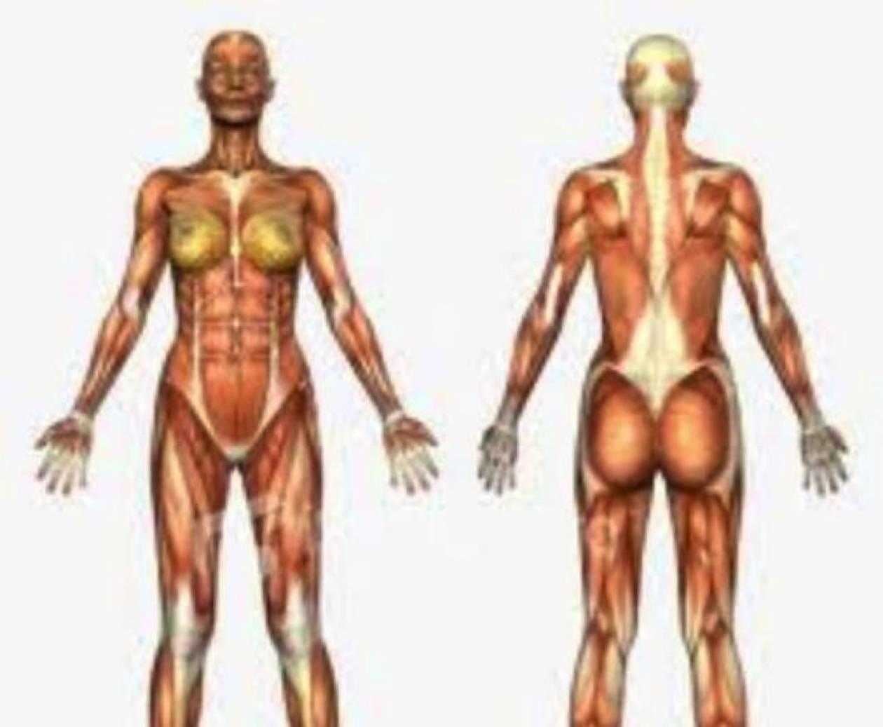Τι δεν ξέρατε για το ανθρώπινο σώμα