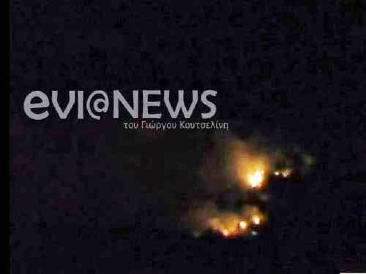 Εύβοια: Ξεκίνησαν οι φωτιές μέσα στον χειμώνα