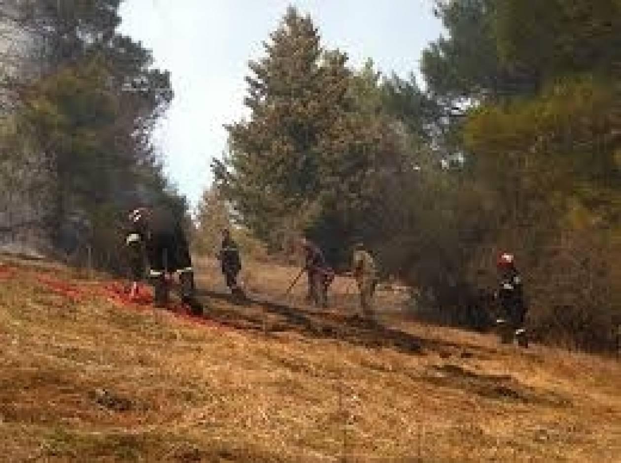Δύο φωτιές στην Καστοριά