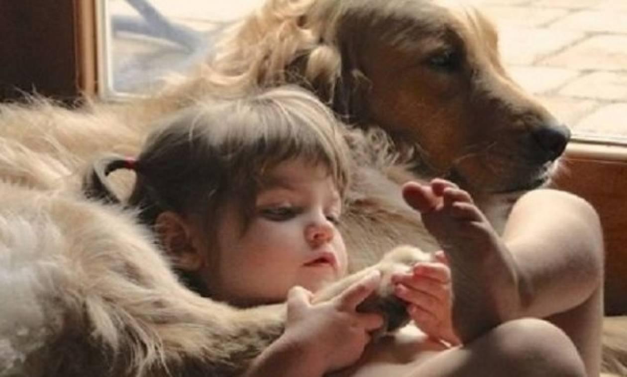 Τι πρέπει να γνωρίζουμε προτού φέρουμε ένα ζώο στο σπίτι