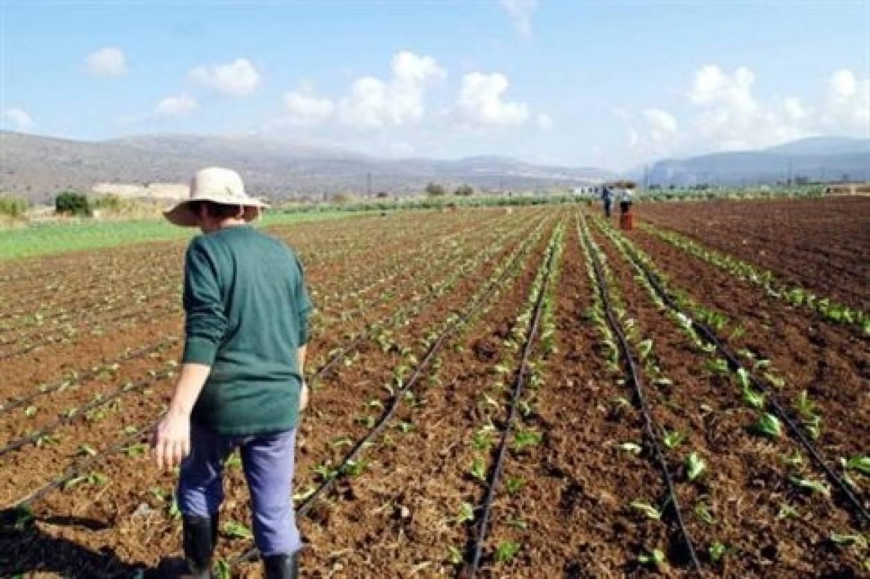 Αγρότες με έσοδα άνω των 15.000 ευρώ θα τηρούν βιβλία
