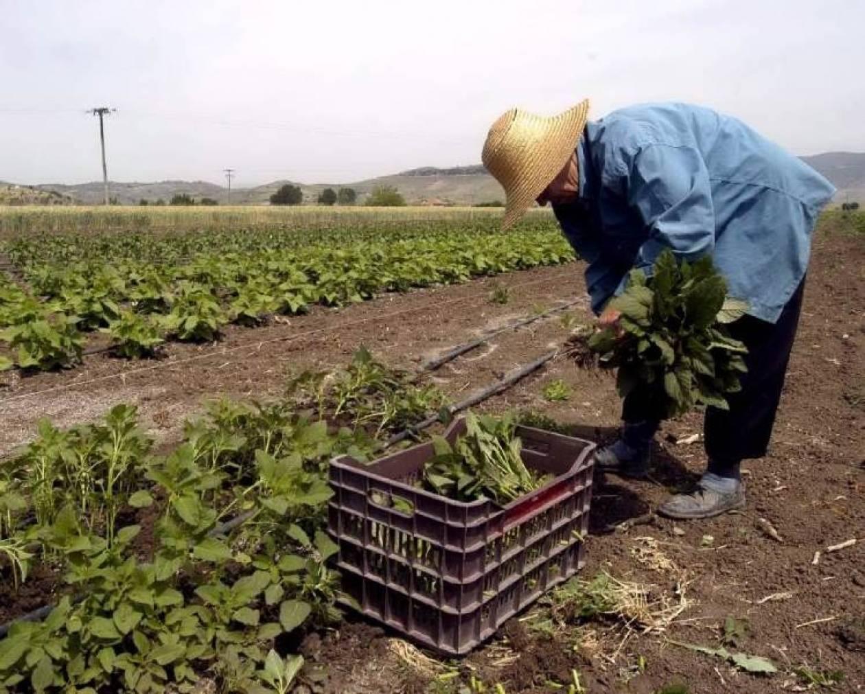ΥΠΟΙΚ: Διευκρινίσεις για υποβολή μισθωτηρίων από αγρότες