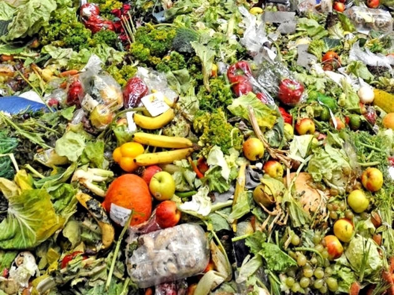 Έως και το 1/3 των τροφίμων που παράγονται σπαταλιούνται ή χάνονται