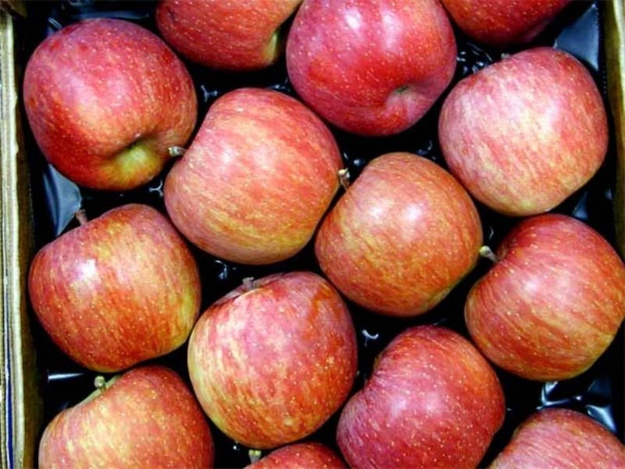 Δέσμευσαν ποσότητα μήλων βελγικής προέλευσης