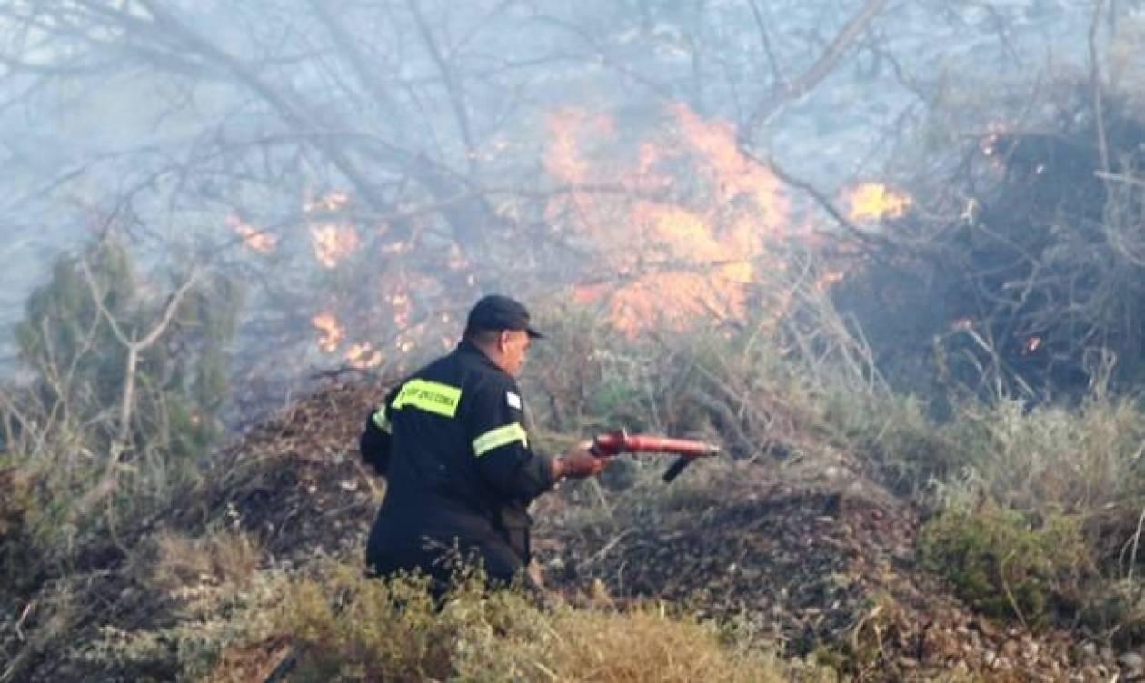 Κρήτη: Υπο έλεγχο η πυρκαγιά στη Δαμάστα