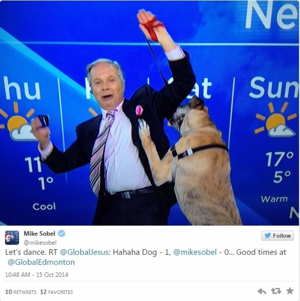 Παρουσιαστής έλεγε τον καιρό μαζί με το σκύλο του και να τι... έπαθε (βίντεο)