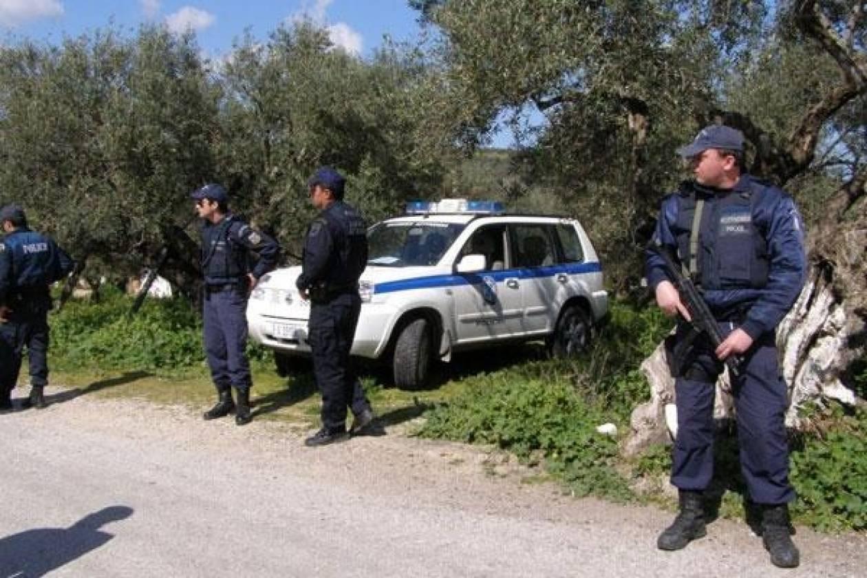Λακωνία: 29 συλλήψεις για διάφορα αδικήματα σε αστυνομική επιχείρηση