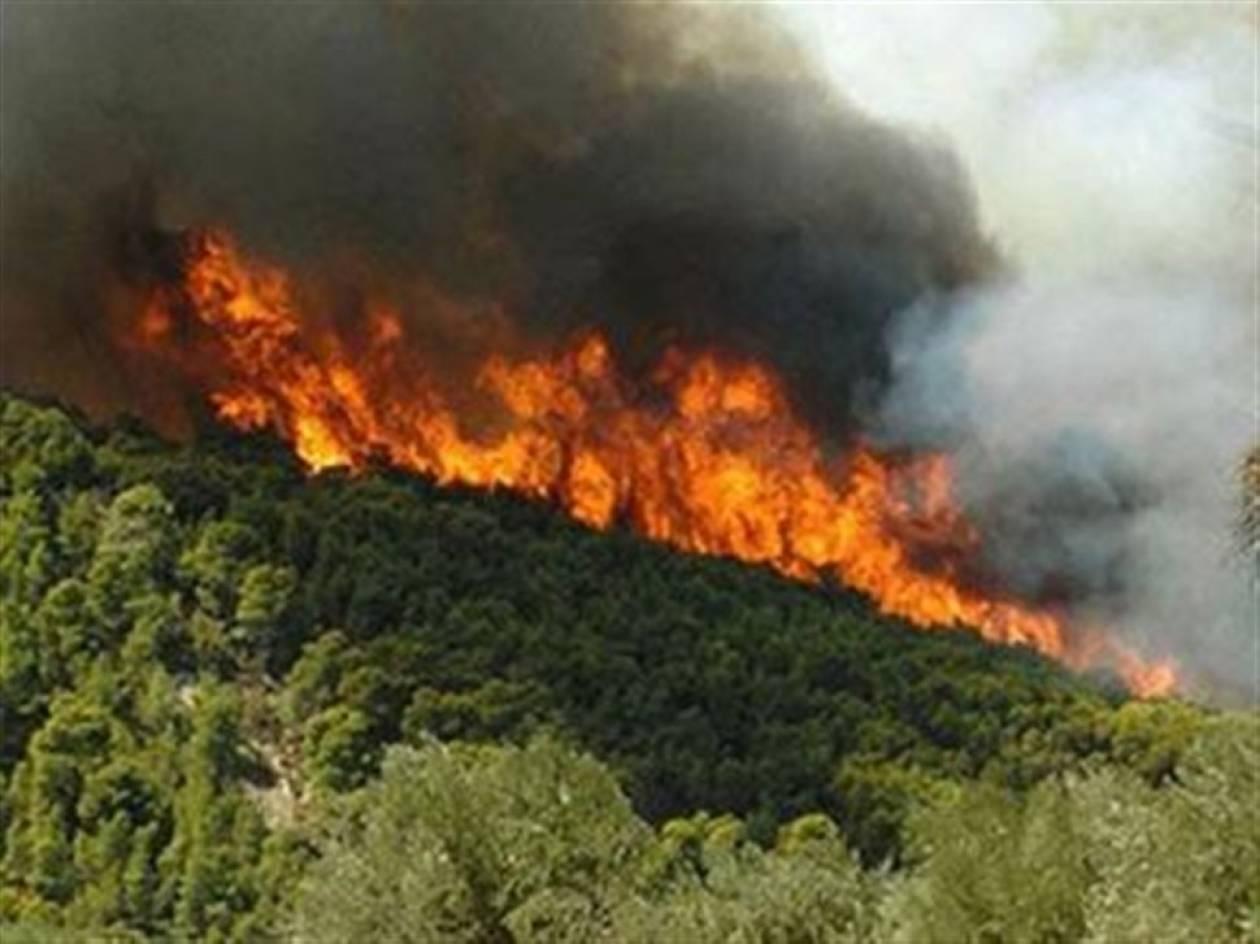 Χίος: Αναζωπυρώνεται η πυρκαγιά - Εγκλωβίστηκαν 4 οχήματα