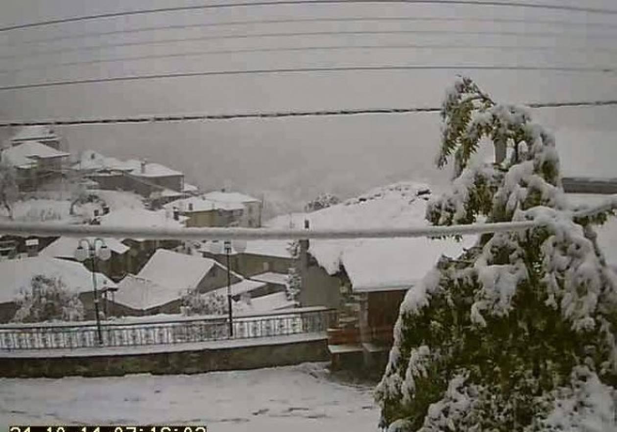 Το… έστρωσε στα ορεινά της Ηπείρου – Φωτογραφίες από τα πρώτα χιόνια