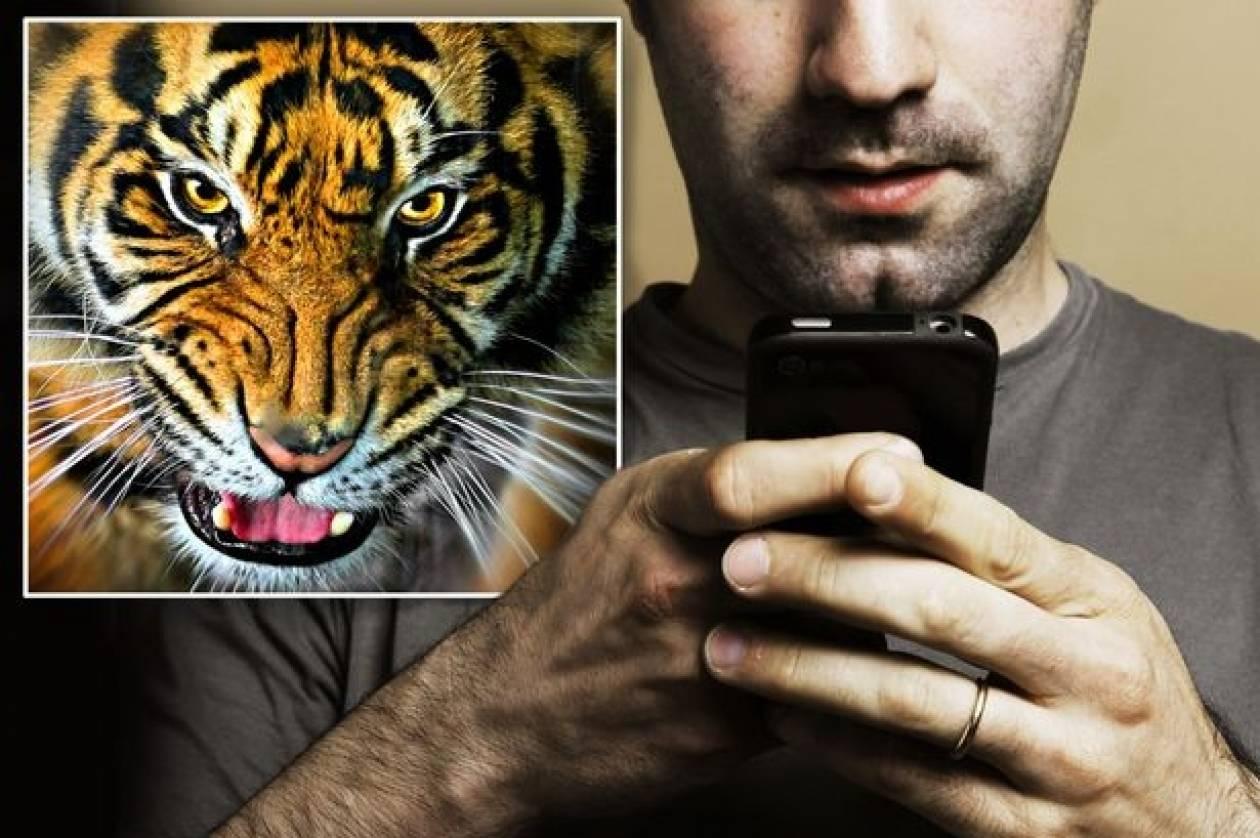 Ουαλία: Τον καταδίκασαν για βίντεο γυναίκας που έκανε σεξ με... τίγρη!