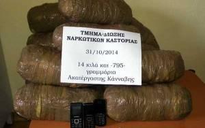 Συνελήφθησαν 2 άτομα στο Επταχώρι Καστοριάς, με 14,7 κιλά κάνναβη