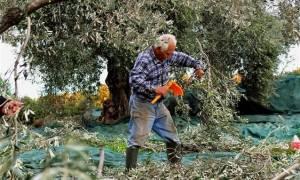 Αλλαγές στην φορολογία των αγροτών