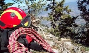 Σοκαρισμένοι οι αυστριακοί ορειβάτες από το δυστύχημα στο Λασίθι (Video)