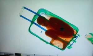 Ισπανία: Προσωρινή άδεια διαμονής στον οκτάχρονο που είχε κρυφτεί σε βαλίτσα