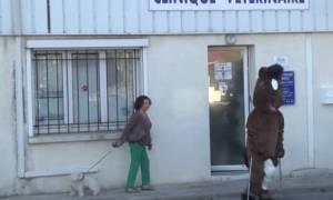 Ο Remi Gaillard τώρα και σκύλος... (video)
