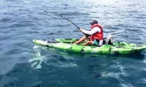 Καρχαρίας αναποδογύρισε το καγιάκ του ψαρά