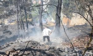 Πυρκαγιές - Δήμαρχος Ηλιούπολης: Πρόκειται για εμπρησμό - Άκουσα τουλάχιστον 3 εκρήξεις