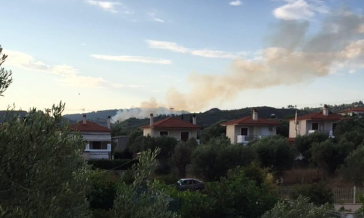 Φωτιά στο Πευκοχώρι Χαλκιδικής
