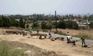 Πάφος: Ευρήματα από τη Χαλκολιθική Περίοδο έφερε στο φως αρχαιολογική έρευνα