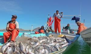Ψαράδες χάθηκαν στον Ισημερινό και βρέθηκαν στο Μεξικό ένα μήνα μετά!
