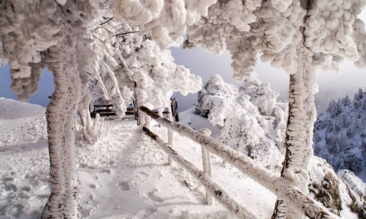 Αποτέλεσμα εικόνας για αττικη χιονια
