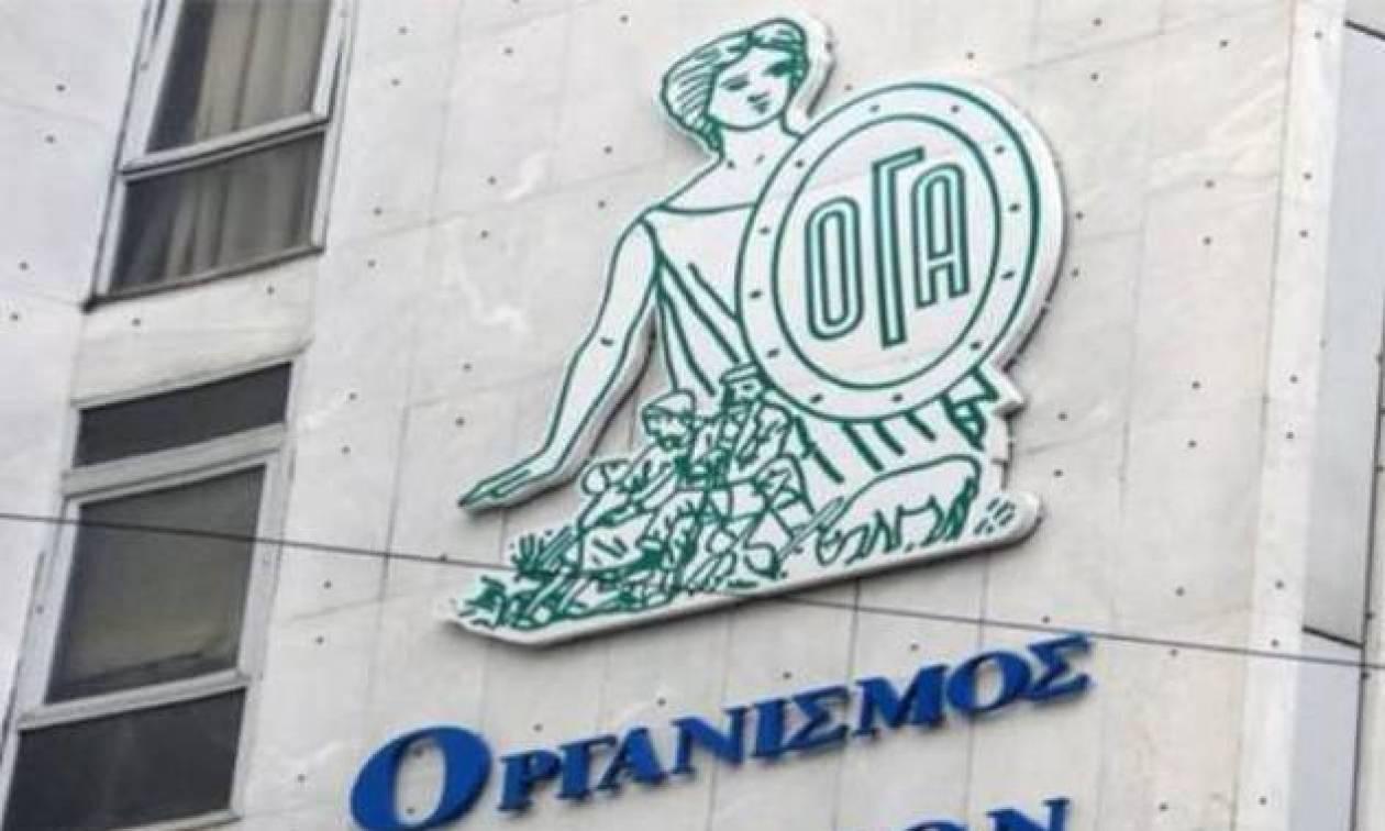 ΟΓΑ: Πότε θα δοθεί το βοήθημα των 1.000 ευρώ - Τι πρέπει να γνωρίζουν οι δικαιούχοι