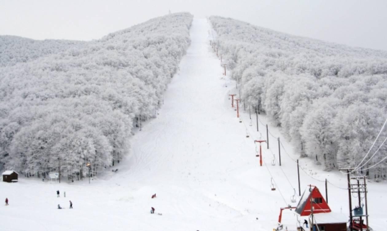 Αποτέλεσμα εικόνας για πηλιο χιονισμενο
