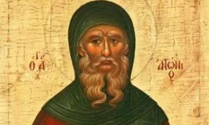 Θαύμα Αγίου Αντωνίου: Θεραπεία καρκινοπαθούς
