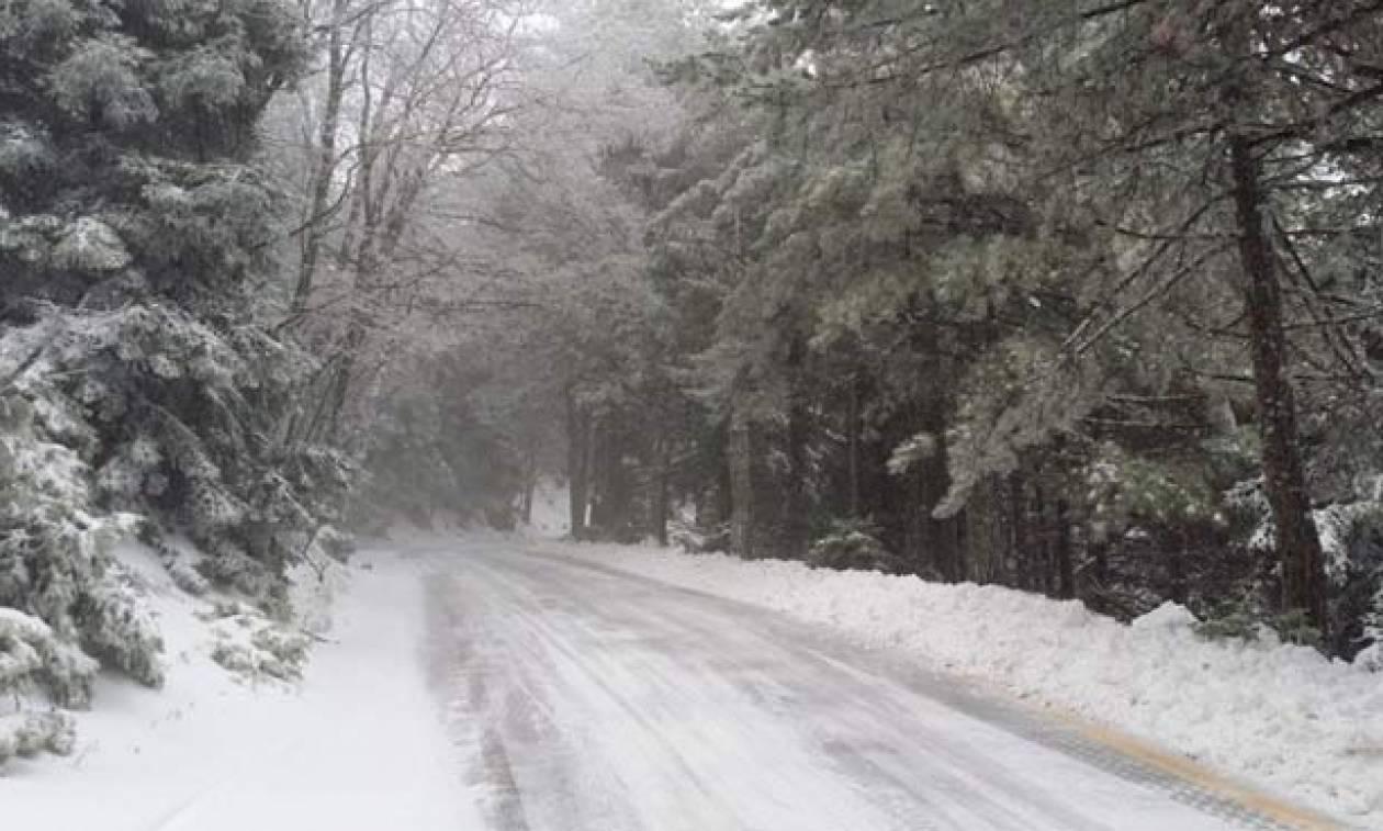 Αποτέλεσμα εικόνας για παρνηθα χιονι