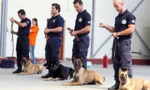 Δείτε πως εκπαιδεύονται σκυλιά της ΕΛ.ΑΣ (vid+pics)