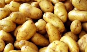Προσοχή: Κατασχέθηκαν πάνω από 7 τόνοι ακατάλληλης πατάτας
