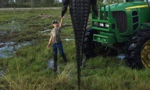 Στα δίχτυα κυνηγών ο τεράστιος αλιγάτορας που έτρωγε αγελάδες – Δείτε την απίστευτη φωτογραφία