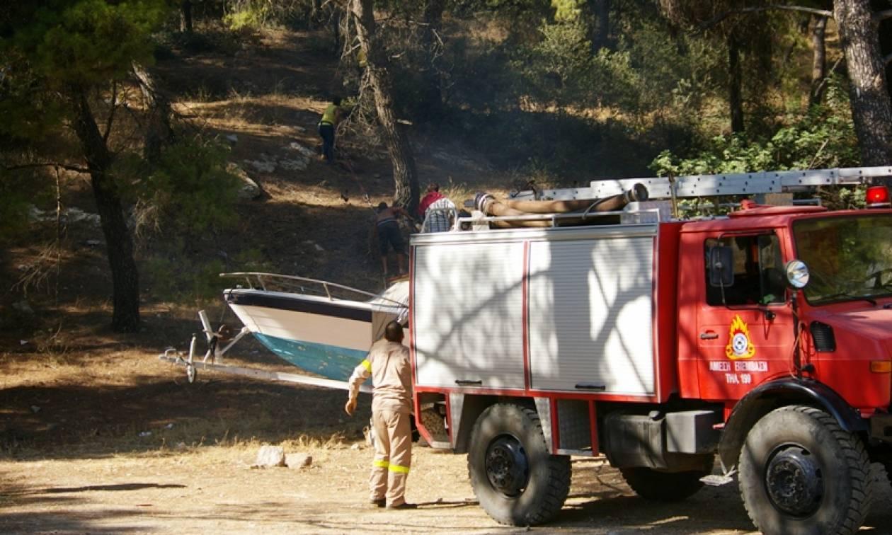 Ξεκινάει η αντιπυρική περίοδος: Τι πρέπει να προσέξετε - Οδηγίες από την Πυροσβεστική