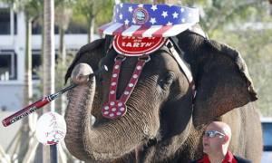 Τέλος οι παραστάσεις με ελέφαντες σε ένα από τα μεγαλύτερα τσίρκα των ΗΠΑ