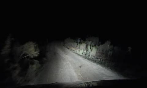 Τρόμος στην ερημιά: Δείτε τι πήδηξε πάνω του μέσα στο σκοτάδι! (video)