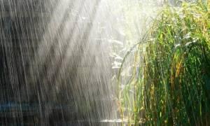 Καιρός: Πάρτε και σήμερα ομπρέλες – Σε ποιες περιοχές θα βρέξει – Πότε θα «μυρίσει» καλοκαίρι