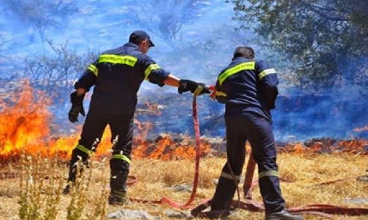 Δήμος Αγίας Παρασκευής: Πρόληψη 18 ατόμων για πυρασφάλεια