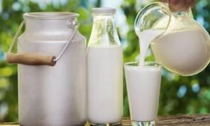 Παρασκεύασαν φρέσκο γάλα διάρκειας 100 ημερών!