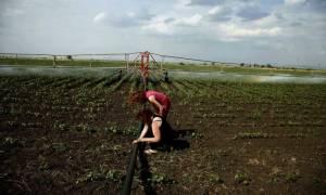 Νέοι αγρότες: Ενημέρωση για το πρόγραμμα Αγροτικής Ανάπτυξης 2014 – 2020
