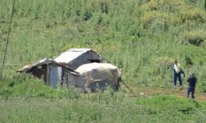 Θεσπρωτία: Ποιοι συνελήφθησαν για την υπόθεση με το αποκεφαλισμένο πτώμα
