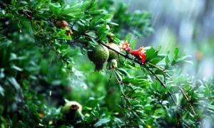 Καιρός: Μπουρίνια και άνοδος της θερμοκρασίας την Πέμπτη (12/5)