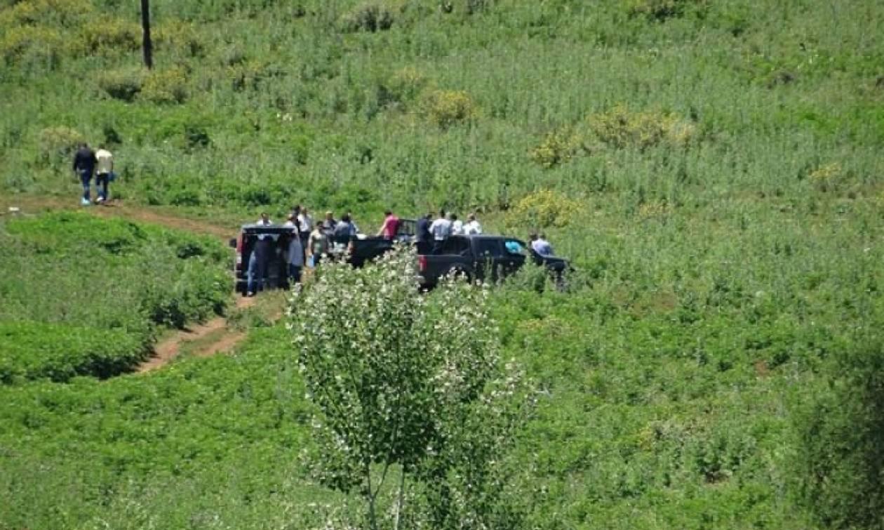 Θεσπρωτία: Αυτός είναι ο 25χρονος που βρέθηκε αποκεφαλισμένος (photo)