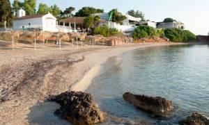 Δήμος Αθηναίων: 130 θέσεις στις Παιδικές Εξοχές